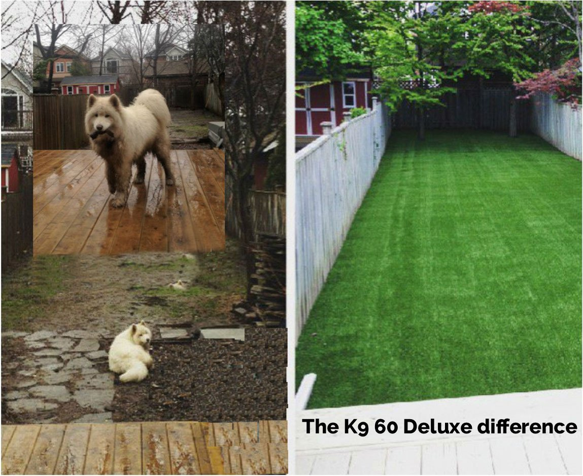 the-K9-60-difference